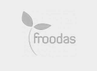 Logo Froodas